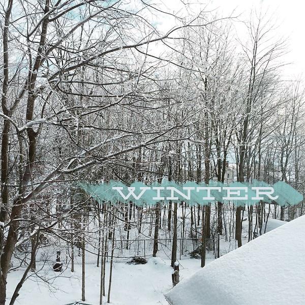 Winter | Melanie Ritchie